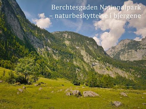 Berchtesgaden Nationalpark – naturbeskyttelse i bjergene