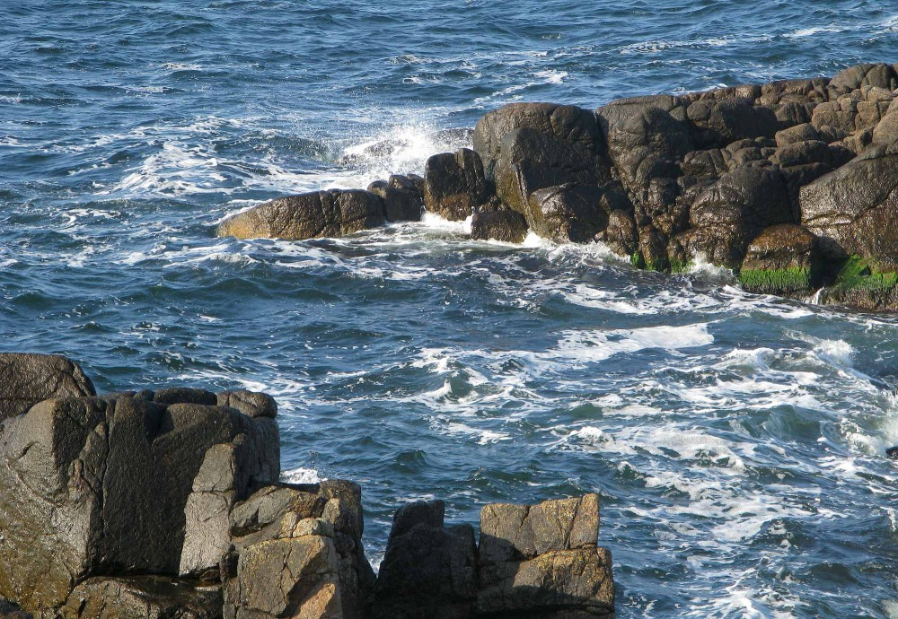 Klipper som forstenede saltvandskrokodiller på lur (foto: Rune Engelbreth Larsen)