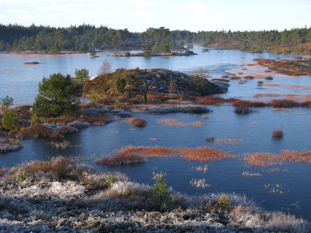 Syvårssøerne, december (foto: Rune Engelbreth Larsen)