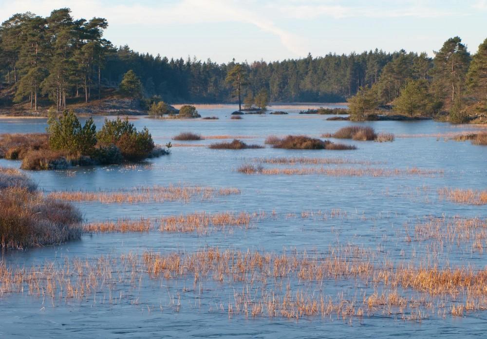Syvårssøerne er en tilbagevendende landskabsbegivenhed –nogle år er de der, andre ikke (foto: Rune Engelbreth Larsen)