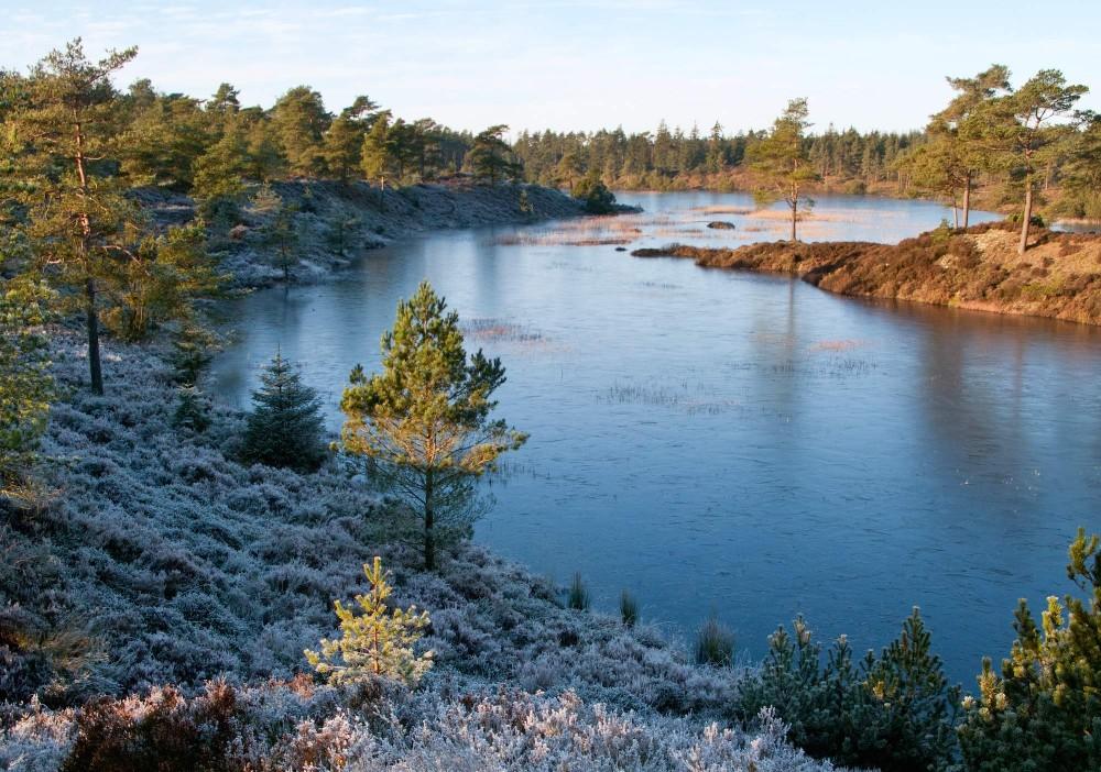 Afvekslende udsiger findes overalt omkring Syvårs Søerne (foto: Rune Engelbreth Larsen)
