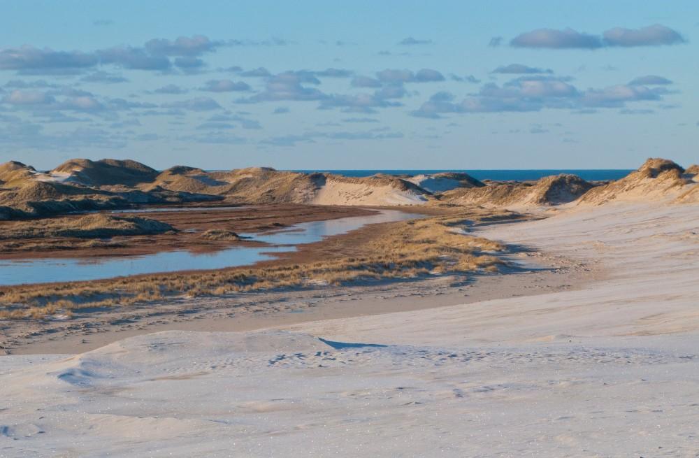 Råbjerg Mile, et bestandigt foranderligt landskab, hvor naturen får lov til at bestemme (foto: Rune Engelbreth Larsen)