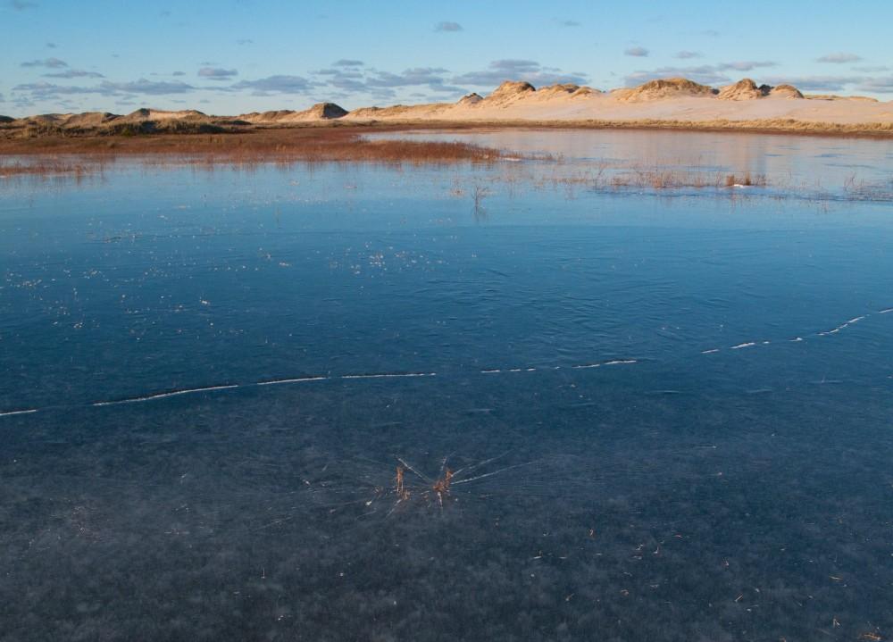 Råbjerg Mile bag en isbelagt milesø (foto: Rune Engelbreth Larsen)