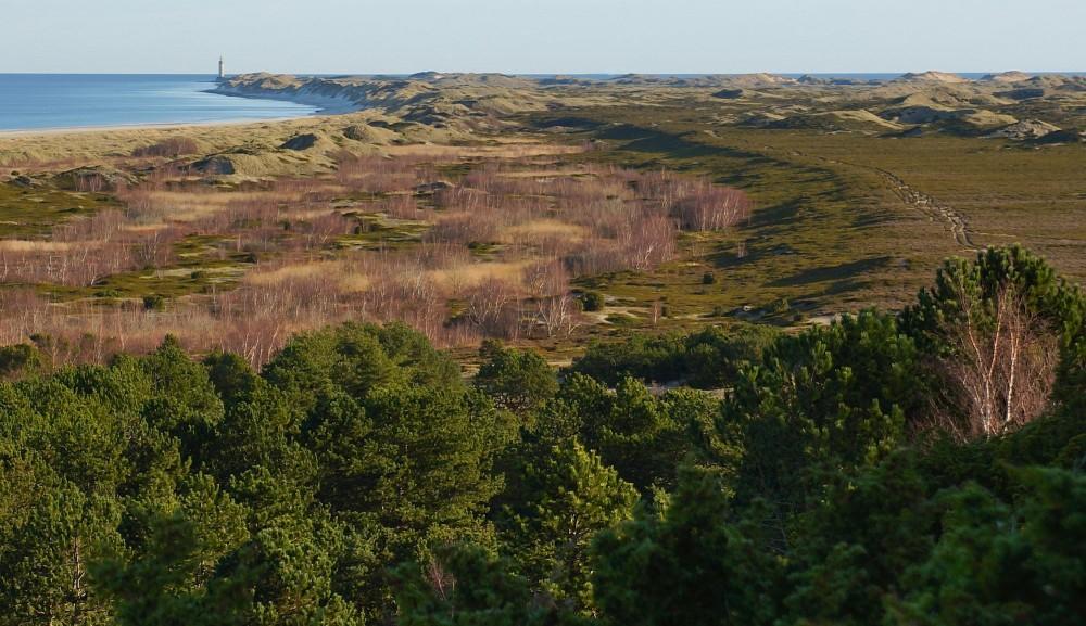 Ørkenen på Anholt - 1.700 hektar ubeboede og aldrig opdyrkede vidder, privateje (foto: Rune Engelbreth Larsen)
