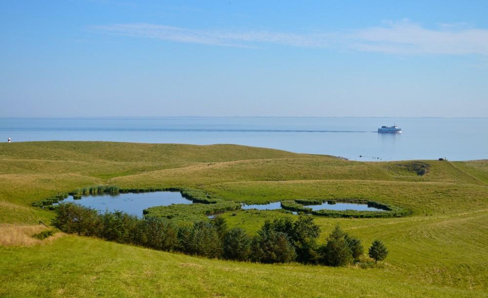 Nekselø, syd (foto: Rune Engelbreth Larsen)