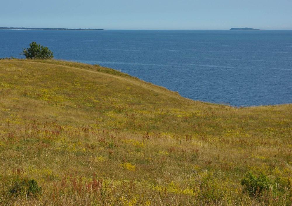 Udsigt mod øst fra Lusklit (foto: Rune Engelbreth Larsen)