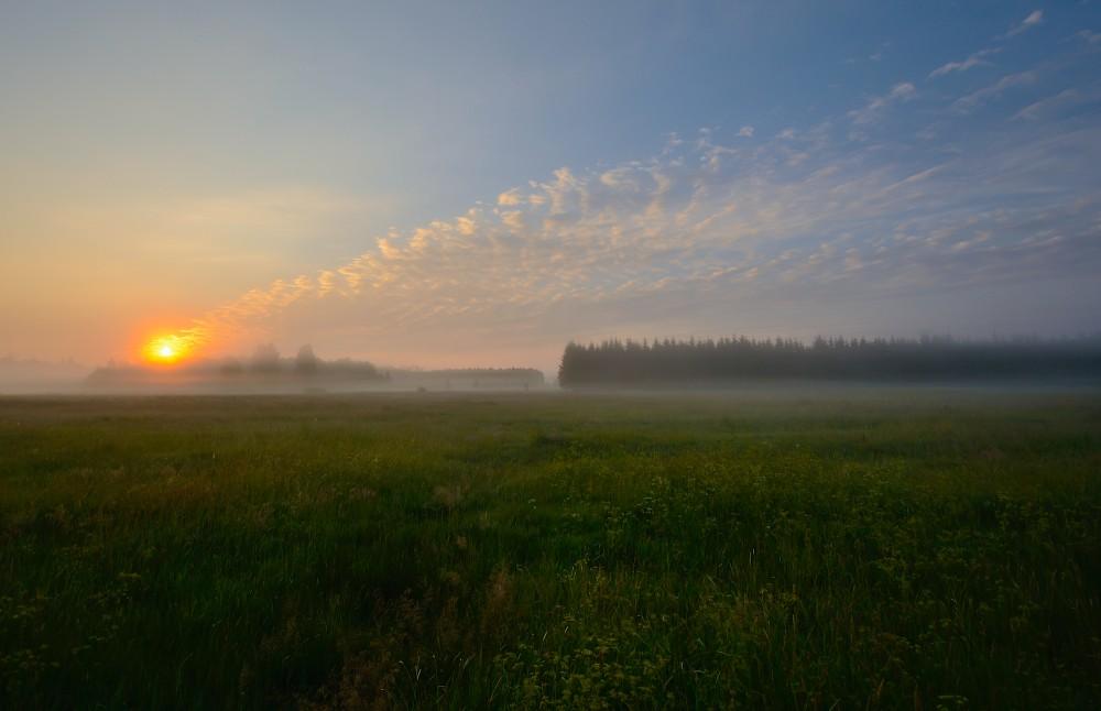 Solopgang over Bialowieza Nationalpark i det østlige Polen (foto: Rune Engelbreth Larsen)