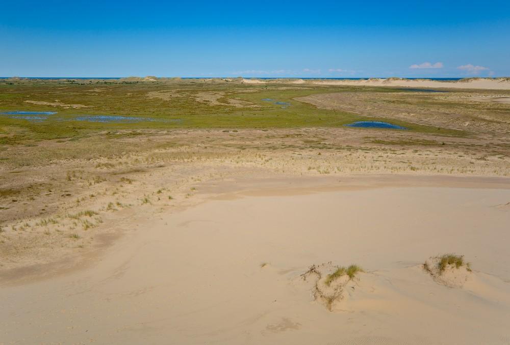 Råbjerg Mile, Danmarks største vandreklit, bevæger sig langsomt fra vest mod øst over Skagens Odde og skaber et dynamisk naturlandskab i sit spor (foto: Rune Engelbreth Larsen)