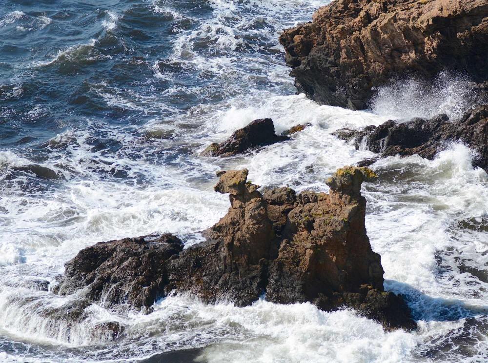 Kamelhovederne og et hav i oprør