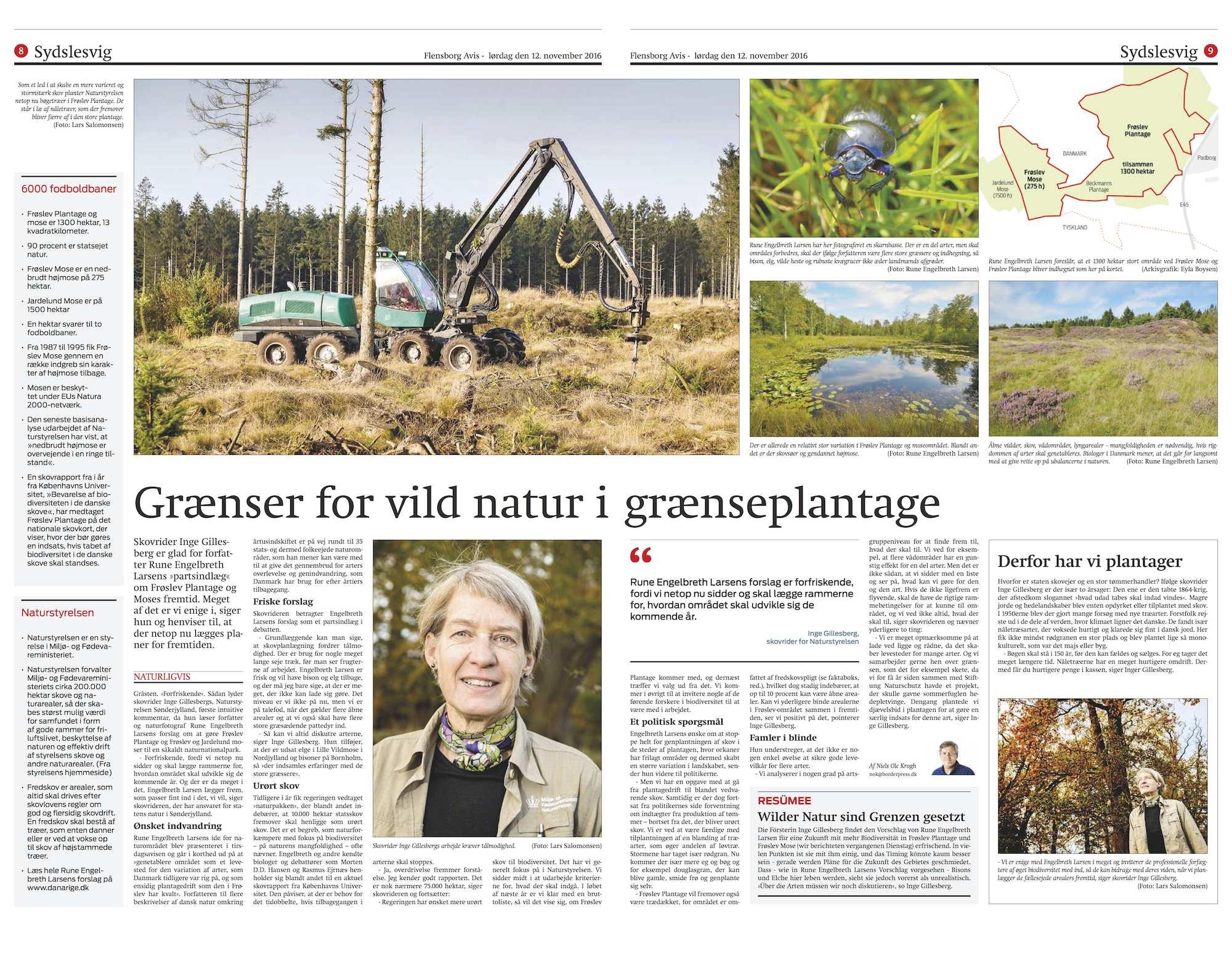 natur omkring flensborg fjord