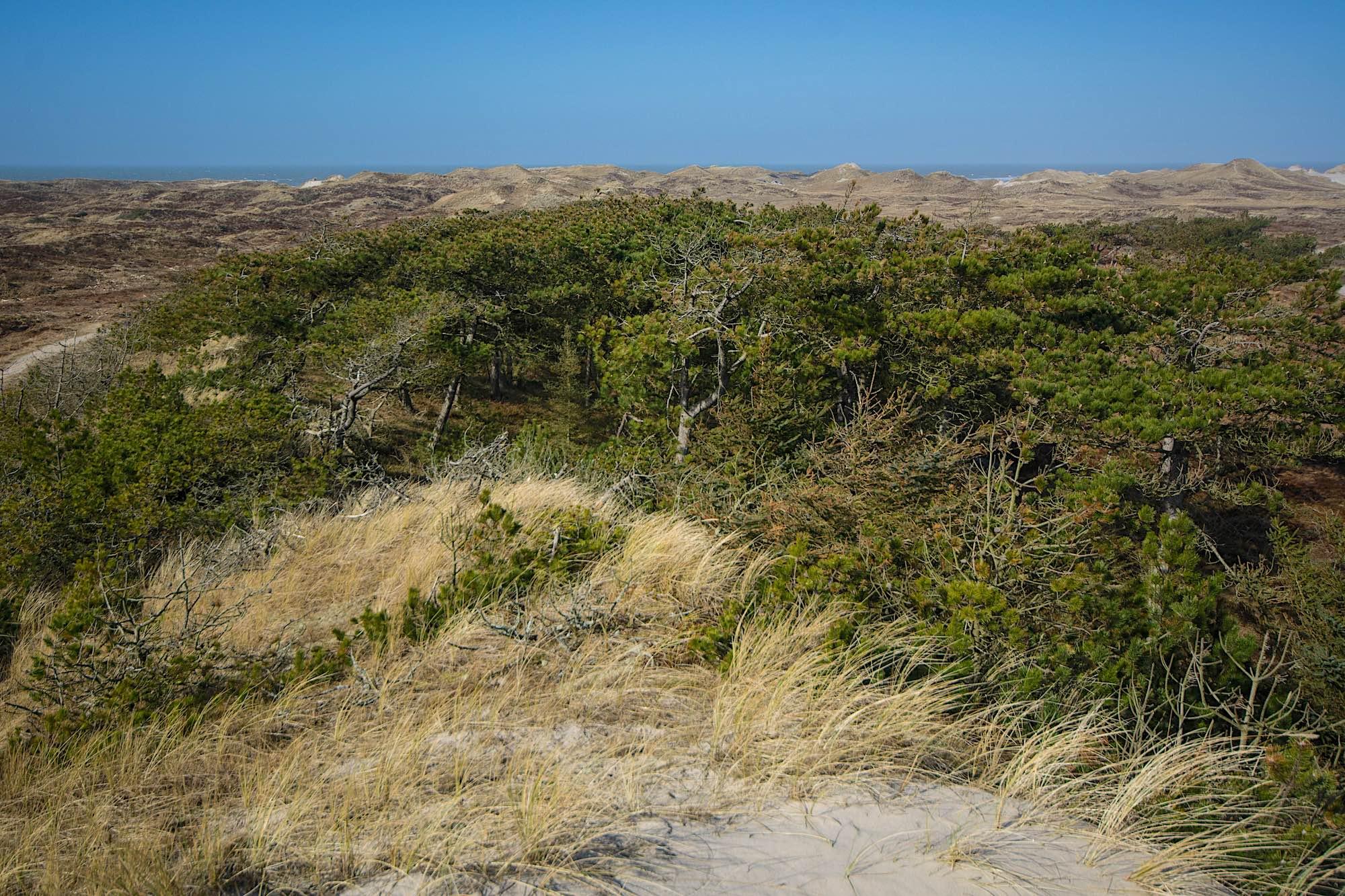 Naturnationalpark | Danarige.dk