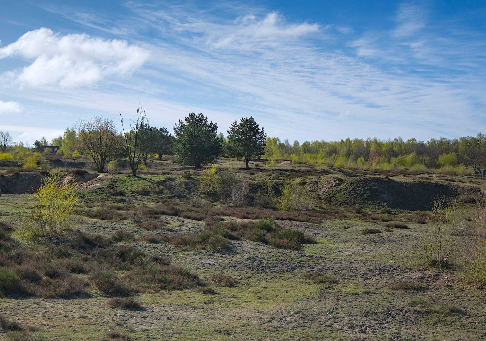 Döberitzer Heide (foto: Rune Engelbreth Larsen)