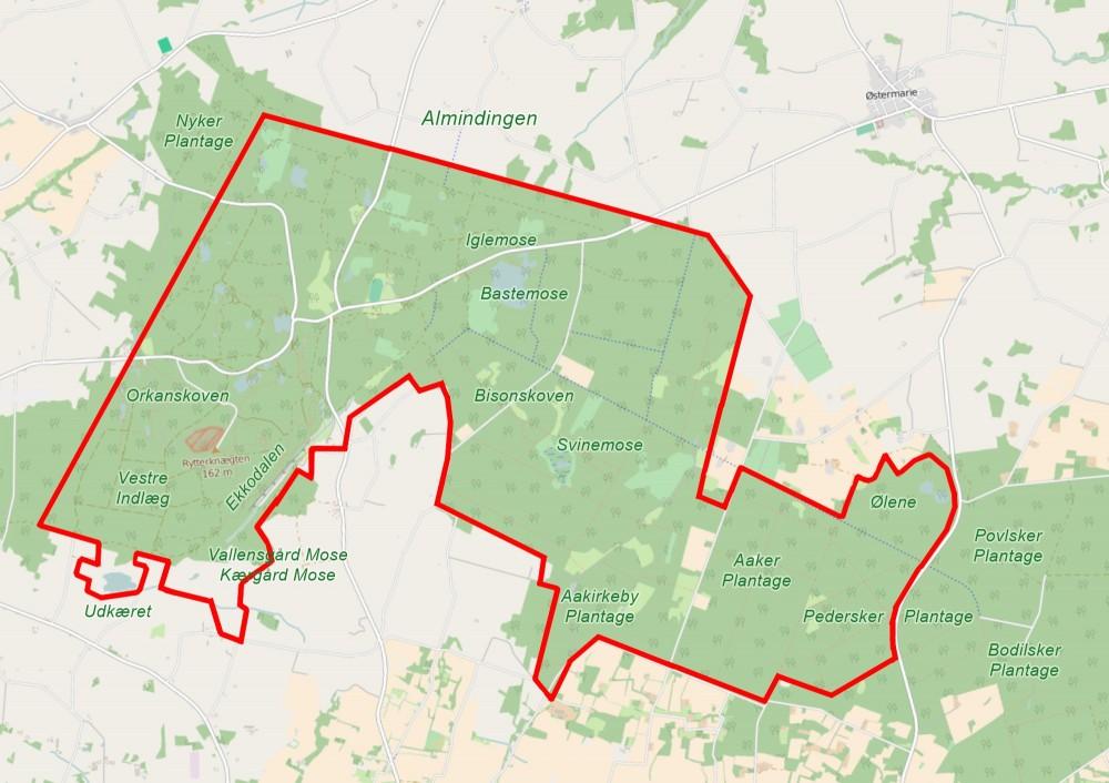Forslag til afgrænsning af Naturnationalpark Almindingen – næsten udelukkende offentligt ejede arealer på sammenlagt 32 kvadratkilometer (kortet er baseret på OpenStreetMap)