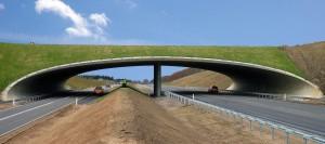 Vejdirektoratets har etableret en faunapassage i form af en bro over motortrafikvejen mellem Bredsten og Vandel for at lette passagen for dyrelivet i Vejle Ådal – også en mulighed for at lette passagen for dyrene på tværs af hovedvejen, der løber gennem Naturnationalpark Hald Sø & Dollerup Bakker (Dansk Beton)