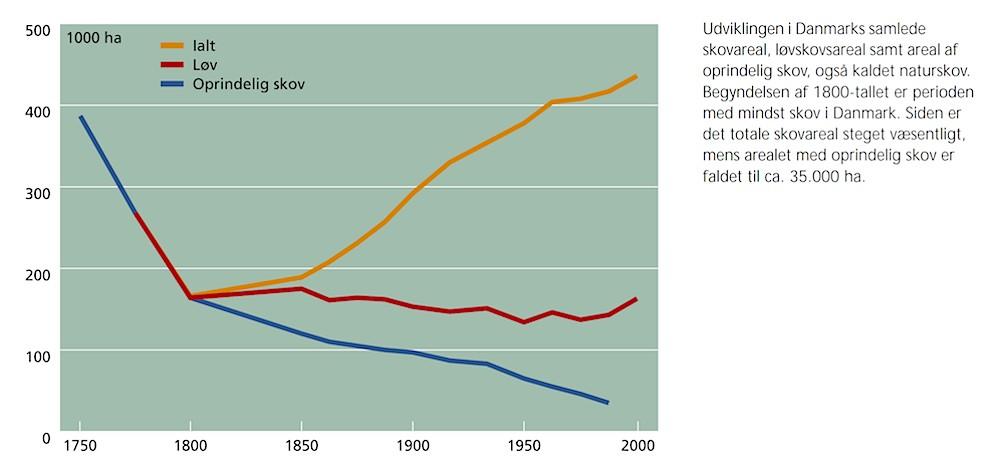 Mere ny skov gavner ikke biodiversiteten, der har brug for gammel skov, og oprindelig skov er fortsat stærkt nedadgående (Wilhjelmrapporten 2001)