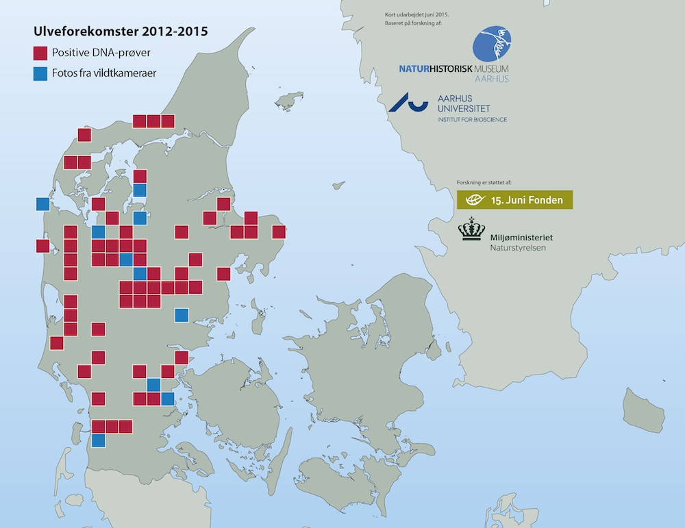 Dokumenterede ulveforekomster i Danmark, 2012-2014 (kort: Naturhistorisk Museum Aarhus)