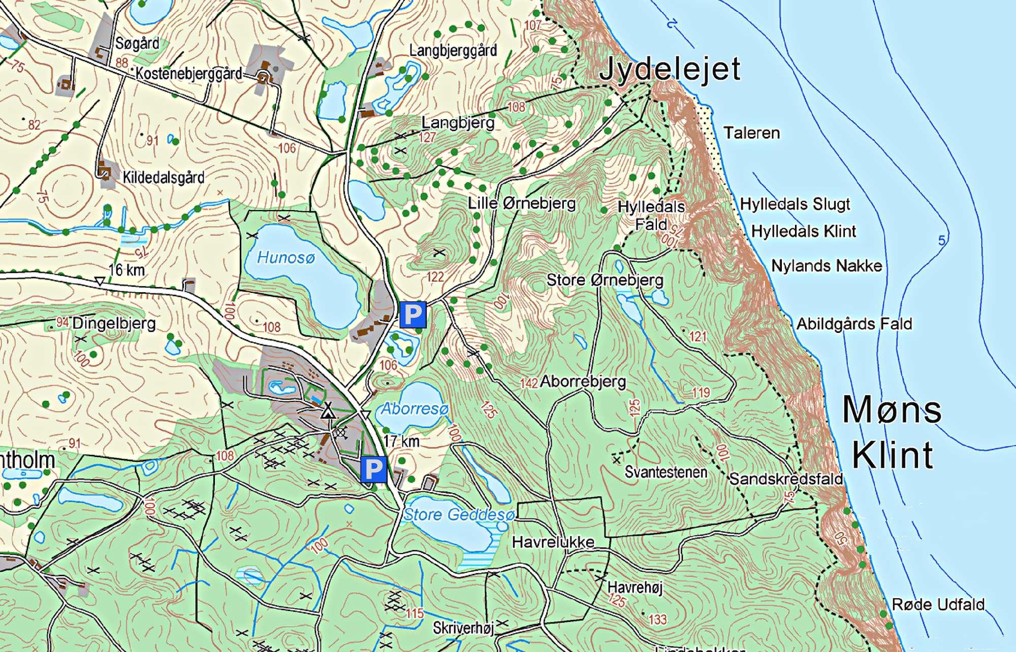 Jydelejet Graesland Ved Mons Klint Fotoserie