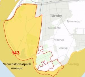 Naturnationalpark Amager rummer væsentlige dele af Natura 2000-areal 143