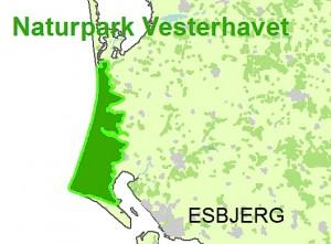 Naturpark Vesterhavet (kortudsnit fra Friluftsrådet). I modsætning til forslaget om en naturnationalpark indebærer udnævnelsen til 'naturpark' ingen forpligtelser til at fremtidssikre natur og biodiversitet. Derfor er en opgradering af naturparken til en naturnationalpark et bud på næste fase i områdets naturbeskyttelse.