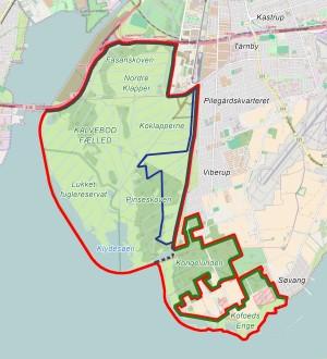 MODEL A: Forslag til hegnslinjer og opdeling af Naturnationalpark Amager (rød linje) med det nuværende hegn (sort linje), forslag til udvidet hegnslinje, der inkluderer Kongelunden og Kofoeds Enge (grøn linje) og et område, der er reserveret til hesteridning og hestefolde (blå linje), og som adskiller tamhestene fra vildhestene (der kan færdes frit på det øvrige areal). Denne model er tilstrækkelig til et valg af (eller imellem) følgende større planteædere: rådyr, dådyr, vildhest (f.eks. exmoor), vildkvæg (f.eks. højlandskvæg) og europæisk bison.