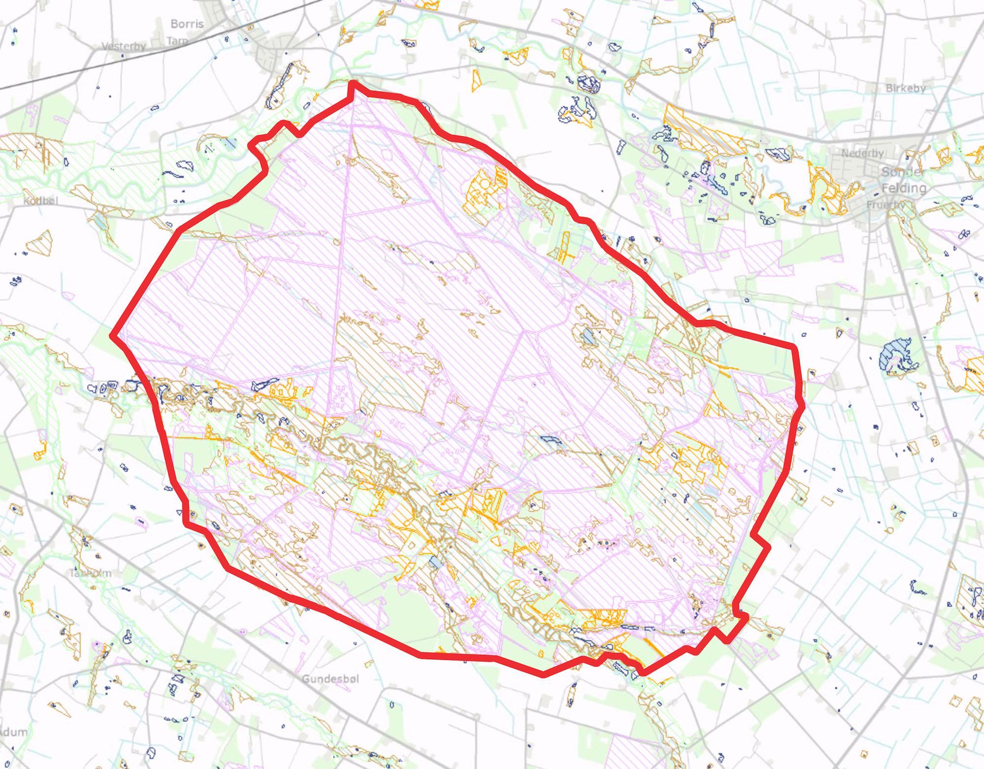 Næsten hele den foreslåede afgrænsning af Naturnationalpark Borris er omfattet af Naturbeskyttelseslovens paragraf 3.