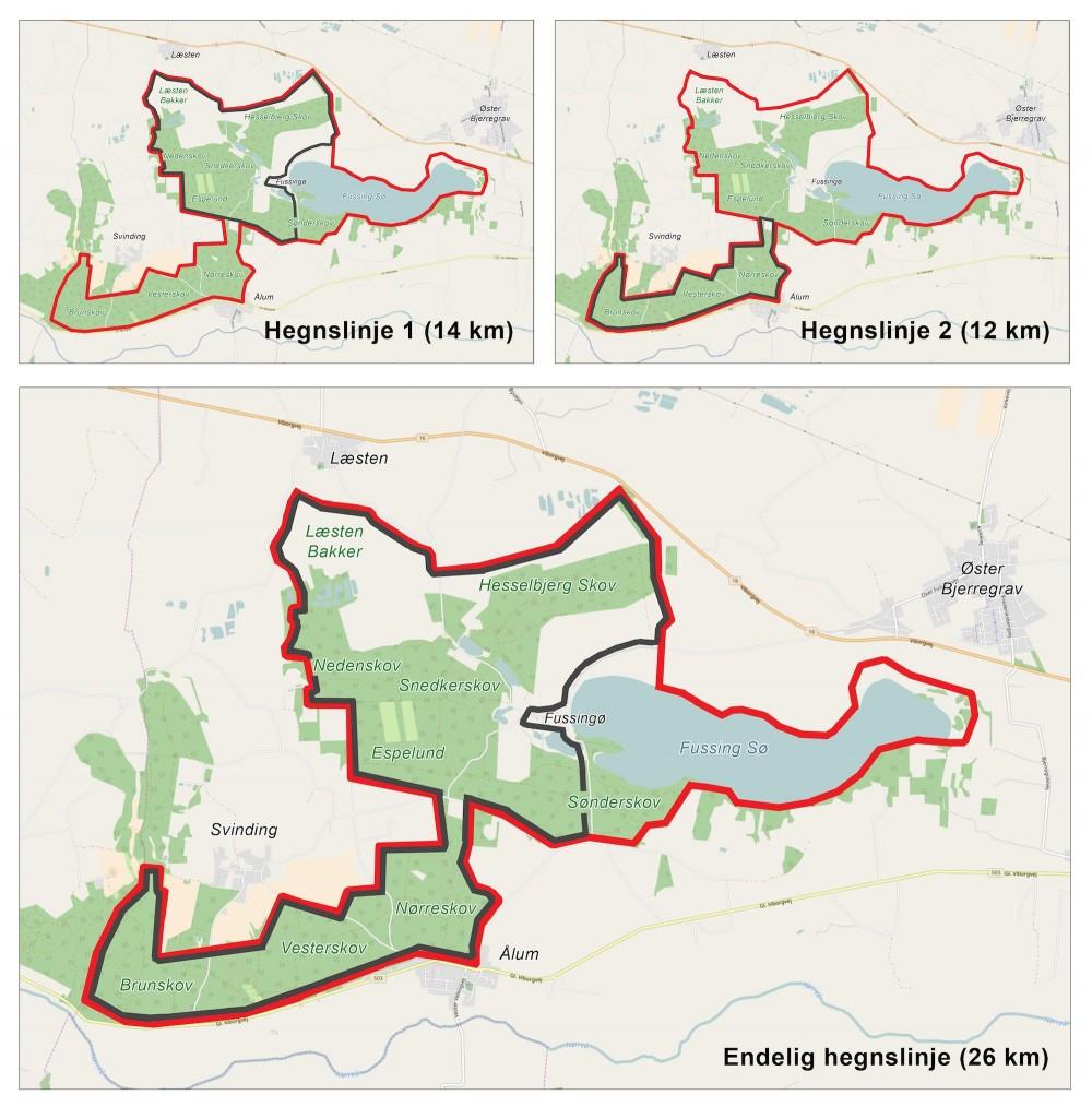 Forslag til hegnslinje omkring hovedparten af Naturnationalpark Fussingø & Læsten Bakker – det kunne f.eks. gøres i to faser, begyndende med den nordlige del. Hvis Læsten Bakker og de privatejede kær ikke kan blive en del af det samlede naturreservat pga. eventuel modvilje fra lodsejere, ville hegnslinjen blive rykket sydligere og samlet blive ca. 1,5 km kortere