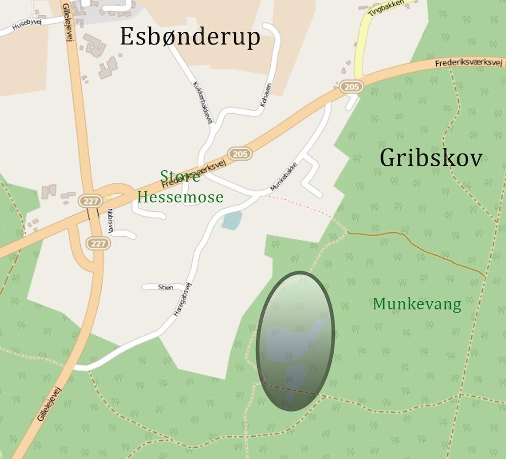 Genetableret vådområde nær Munkevang i Gribskov