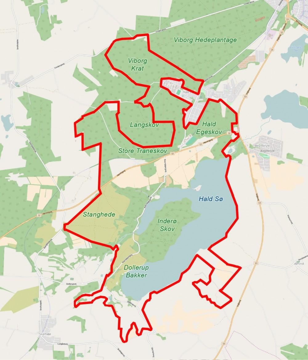 Forslag til rammerne for Naturnationalpark Hald Sø & Dollerup Bakker – stort potentiale for 15 kvadratkilometer vildere natur (dette og sidens øvrige kort indeholder data fra OpenStreetMap og Miljø- og Fødevareministeriets Digitale Naturkort)