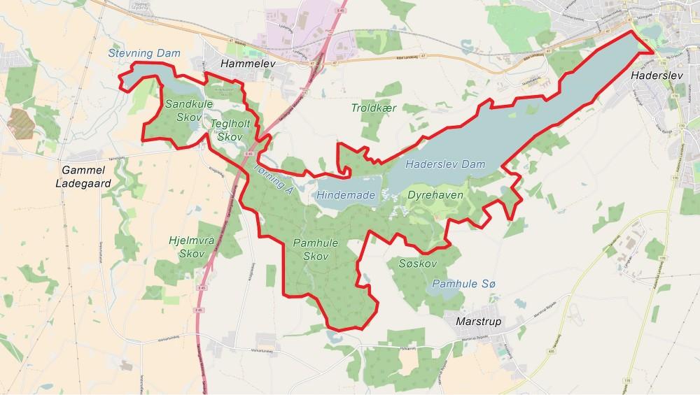 Forslag til afgrænsning af et 1.000 hektar stort naturreservat: Naturnationalpark Hindemade & Pamhule Skov (baseret på OpenStreetMap)