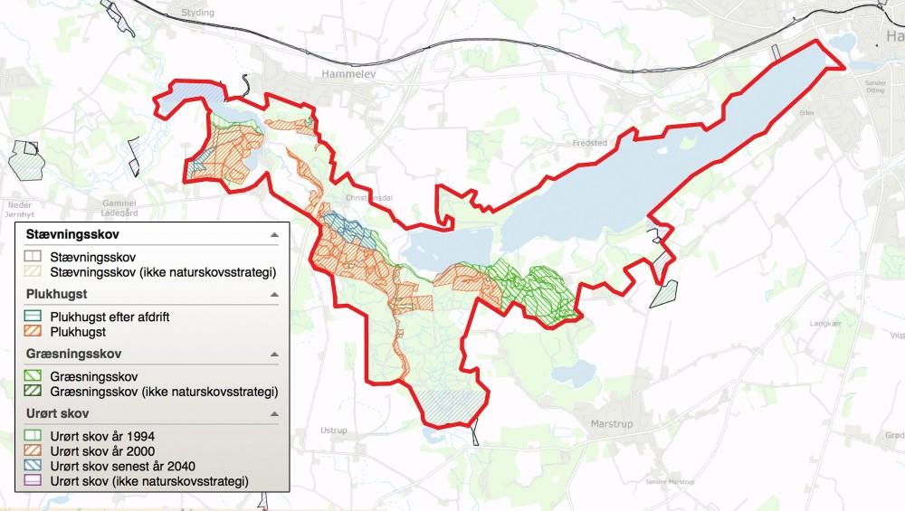 Af kortet her fremgår det, at forholdsvis store dele af skovarealerne enten er udlagt til plukhugst, græsning eller urørt skov (eller er planlagt som sådan i 2040), hvorfor skridtet til at udlægge det hele til urørt skov med skovgræsning ikke er så stort som i mange andre danske statsskove
