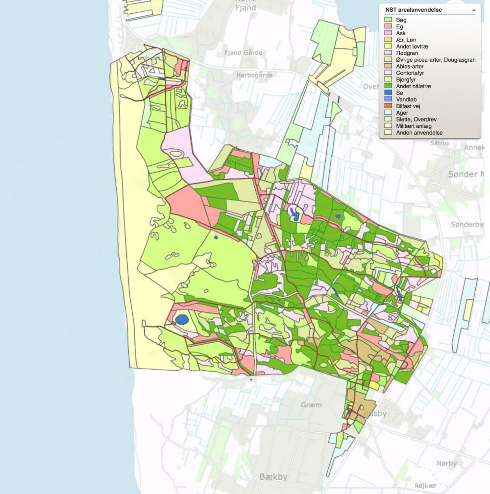 Den nuværende fordeling af træsorter i Husby Klitplantage