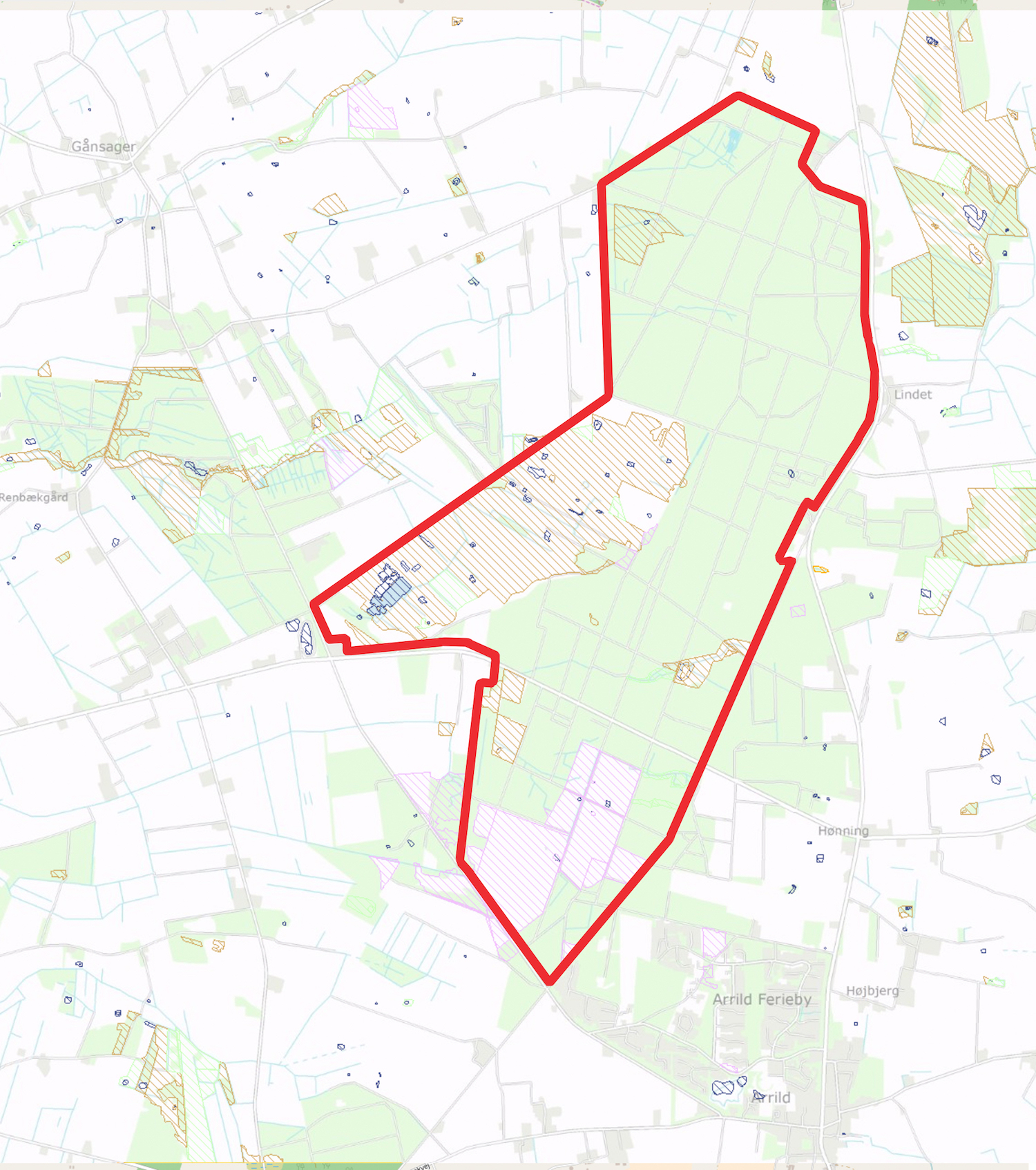 Hovedparten af forslaget til Naturnationalpark Lindet Skov & Hønning Mose er skov, der bør udlægges som vildskov (såkaldt urørt skov), men Hønning Mose er ét stort paragraf 3-areal, der er beskyttet i henhold til Naturbeskyttelsesloven.