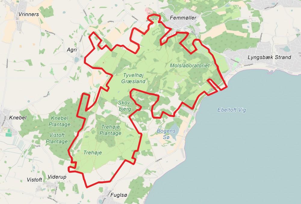 Forslag til afgrænsning af Naturnationalpark Mols Bjerge – et godt 11 kvadratkilometer stort område, hvor naturen kunne prioriteres på naturens egne præmisser (kortet er baseret på OpenStreetMap)