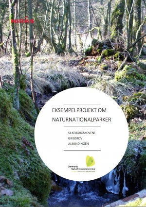 Konsulentfirmaet NIRAS' rapport med skitseprojekter til naturnationalparker i tre større skovområder, Silkeborgskovene, Gribskov og Almindingen