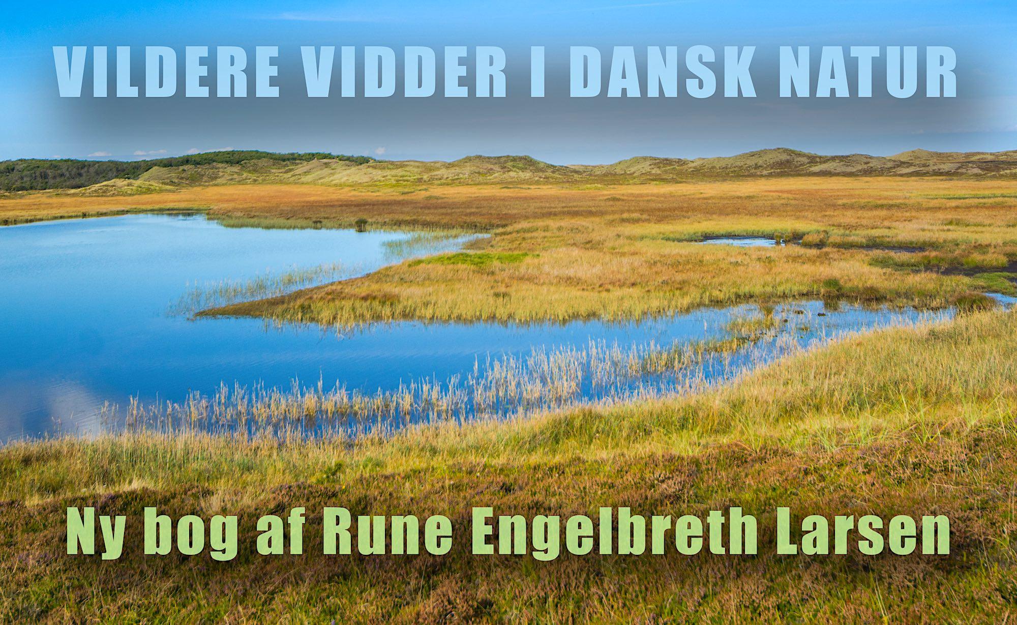 Ny bog af Rune Engelbreth Larsen: 'Vildere vidder i dansk natur'
