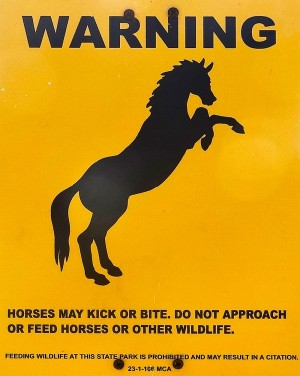 Warning: Horses may kick or bite. Do not approach or feed horses or other wildlife