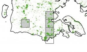 Zoomer vi ind på Sønderjylland, fremgår det, at det sydligste af de udpegede skovkvadrater overlapper Frøslev Plantage – det er altså ét af de vigtige skovarealer at udpege meget urørt skov, hvis biodiversitetstabet skal standses i skovene på nationalt plan