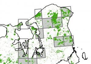 Zoomer vi ind på Nordsjælland kan man se, at to af de udpegede kvadrater overlapper Gribskov – det er altså én af de vigtige skove at udpege meget urørt skov, hvis biodiversitetstabet skal standses i skovene