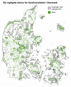 Forskere fra Center for Makroøkologi, Evolution og Klima ved Københavns Universitet har beregnet, at minimum 75.000 hektar privatejet og statslig skov skal være såkaldt urørt skov, hvis vi skal bevare Danmarks mange truede skovarter. Men det kan ikke være vilkårlige 75.000 hektar – dette kort viser, i hvilke områder danske skove skal slippe for motorsavene, hvis dette minimumsmål skal holde (Petersen, A.H. m.fl.: 'Bevarelsen af biodiversiteten i de danske skove)