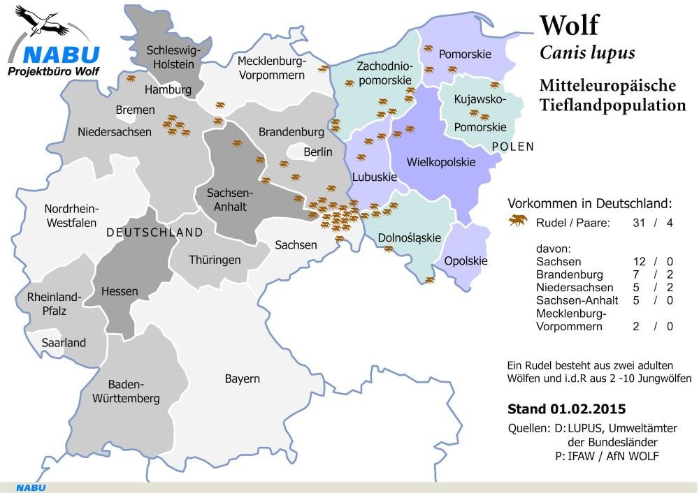 Ulveudbredelse i Tyskland (Kilde: NABU)