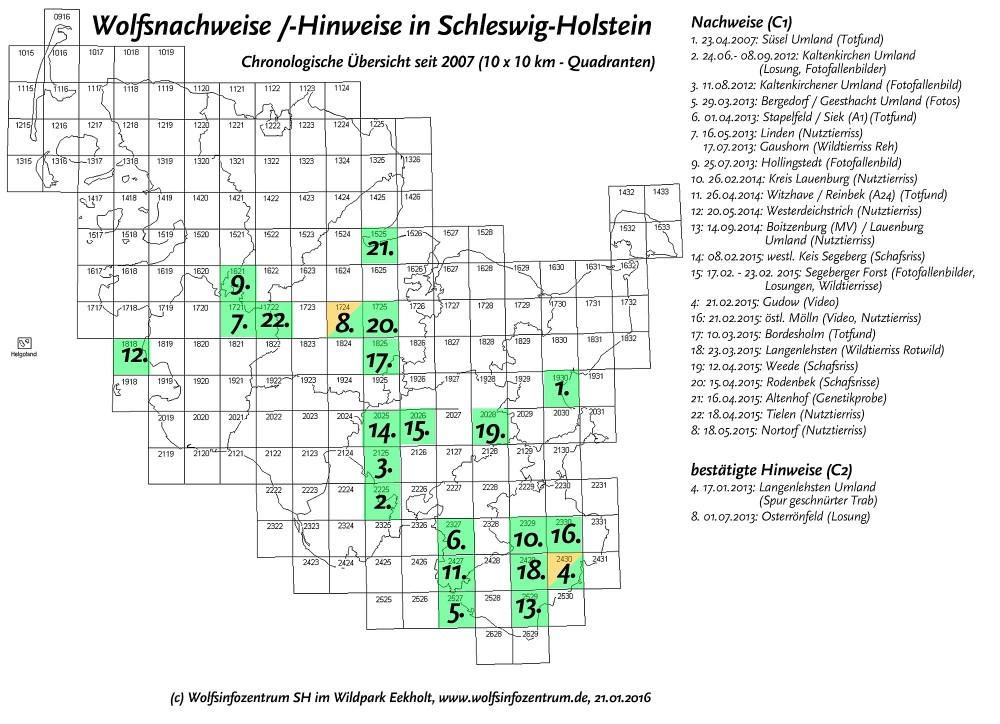Tyske ulveobservationer i Schleswig Holstein (Kilde: Wildpark Eekholt)