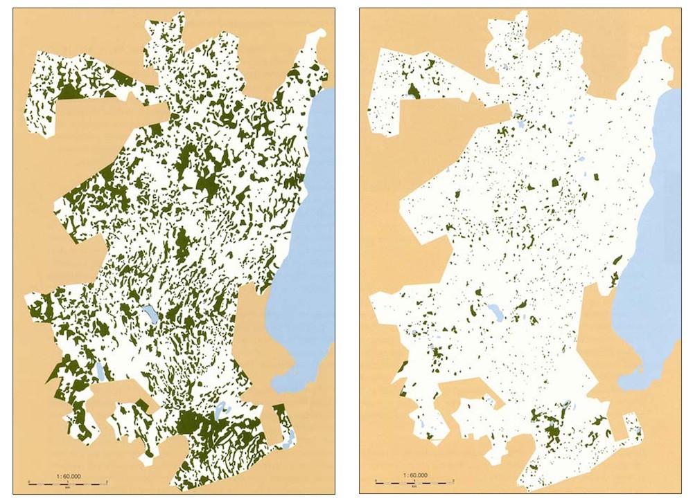 Udbredelsen af moser i Gribskov i 1847-1858 (t.v.) og i 1988 er illustrativ for den danske skovudvikling i almindelighed – grøfter og drænrør har afvandet skovene i vid udstrækning og skabt et unaturligt tørt skovmiljø. Gribskovs samlede moseareal er i perioden reduceret med 83 procent (Flemming Rune: Decline of mires in four Danish state forests during the 19th and 20th century, Forskningsserien nr. 21, 1997)