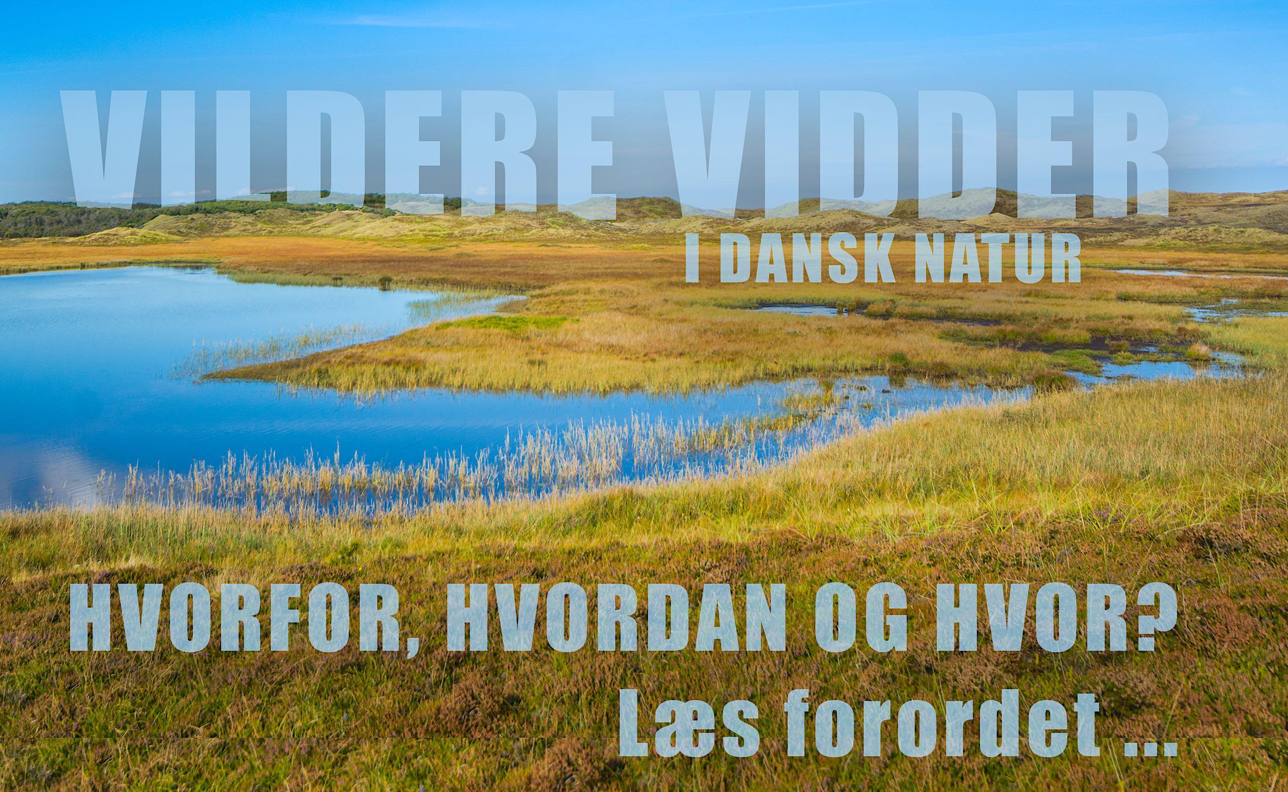 PR-foto: 'Vildere vidder i dansk natur'